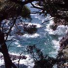 Il mare delle Cinque Terre