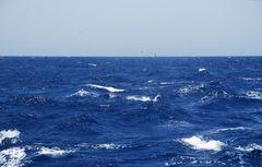 il Mare_un viaggio dentro di Noi _ 02
