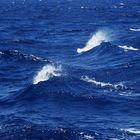 il Mare_un viaggio dentro di Noi _ 05