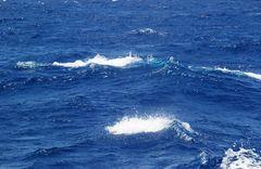 il Mare_un viaggio dentro di Noi _ 07