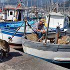 Il micio ed il Pescatore