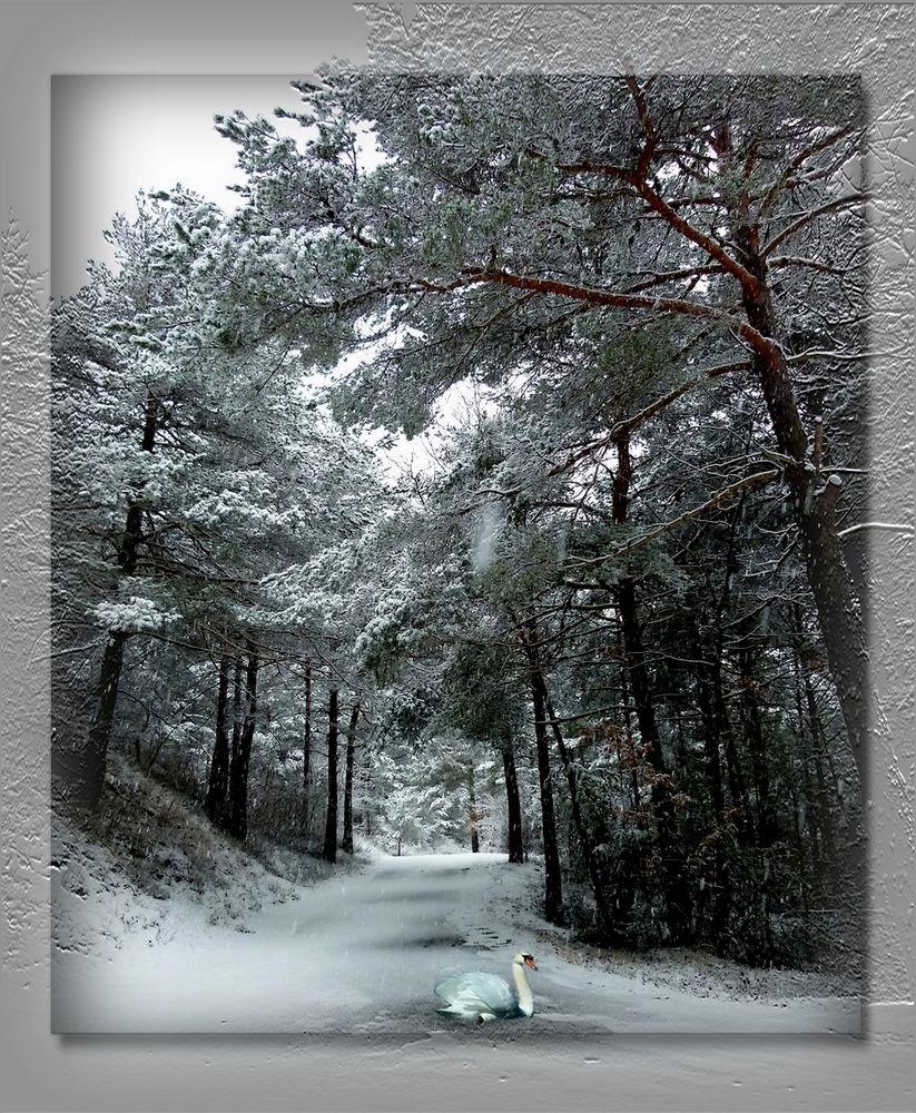 * il neige *