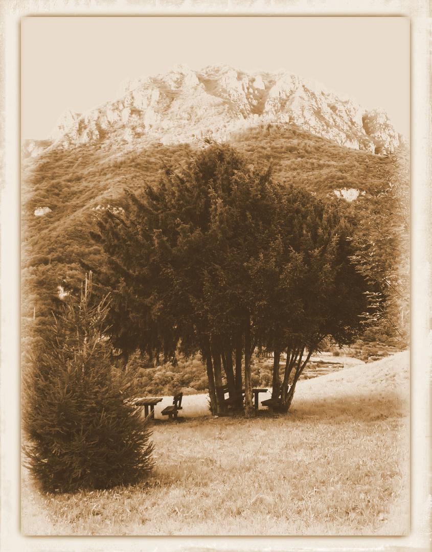 Il nido d'amore dei miei nonni... dove è stato concepito mio padre durante la guerra