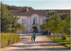 Il Palazzo della Signora della Pietà.