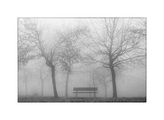 Il Parco delle storie dimenticate # 3