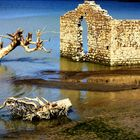 il passato riaffiora nel lago del liscione in secca... (CB)