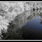 il pescatore-infrared