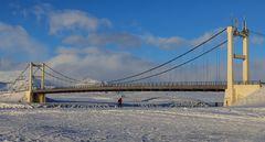il  ponte sul ghiaccio (2)