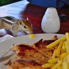 Il pranzo