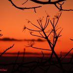 Il primo tramonto del 2012