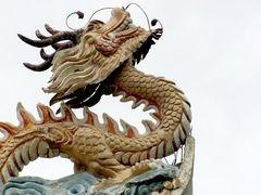 Il richiamo del drago
