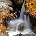 Il rio Pogallo d'autunno.