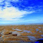 Il ritirarsi della marea.