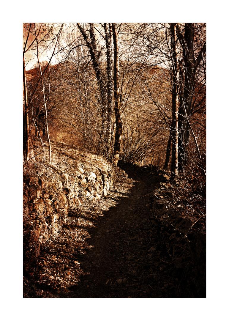 il sentiero per dove
