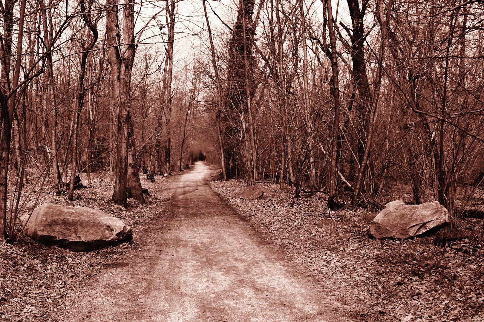 Il sentiero prosegue