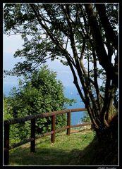 ..il sentiero sul lago..