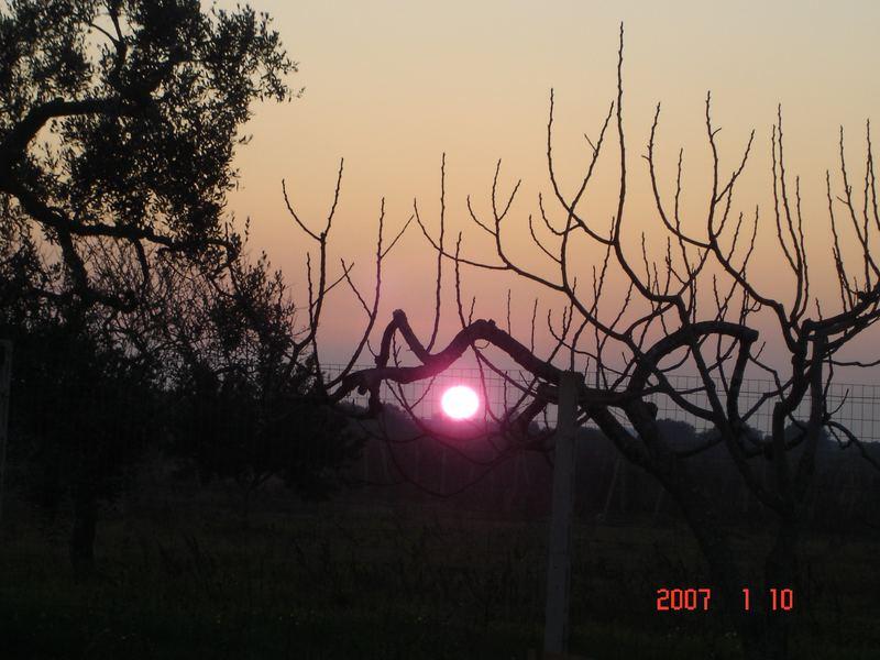 il sole sene va