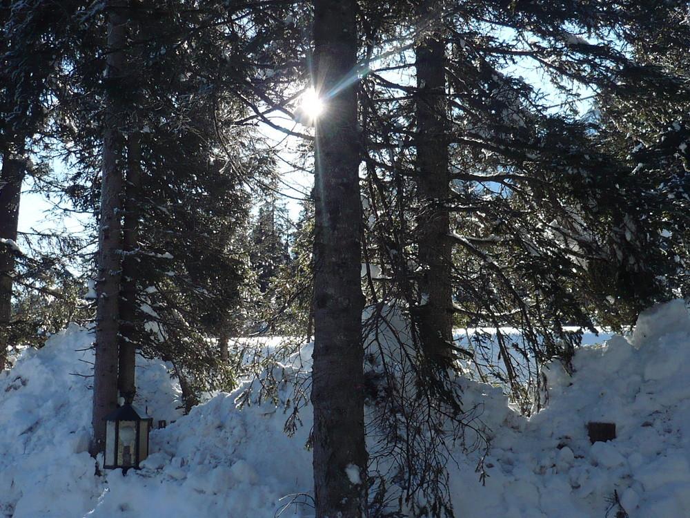 il sole tra la neve e il Natale