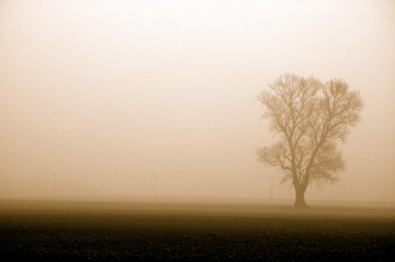 Il solitario.....abbandonato