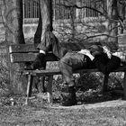Il sonno dei giusti