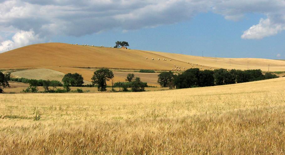 Il tavoliere e le sue colline non ancora incenerite