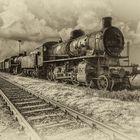 """""""Il treno della vita"""" ...solo andata."""
