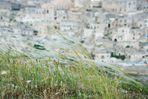 Il vento della Cultura su Matera