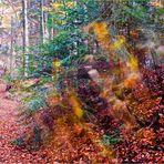 Il vento e le foglie