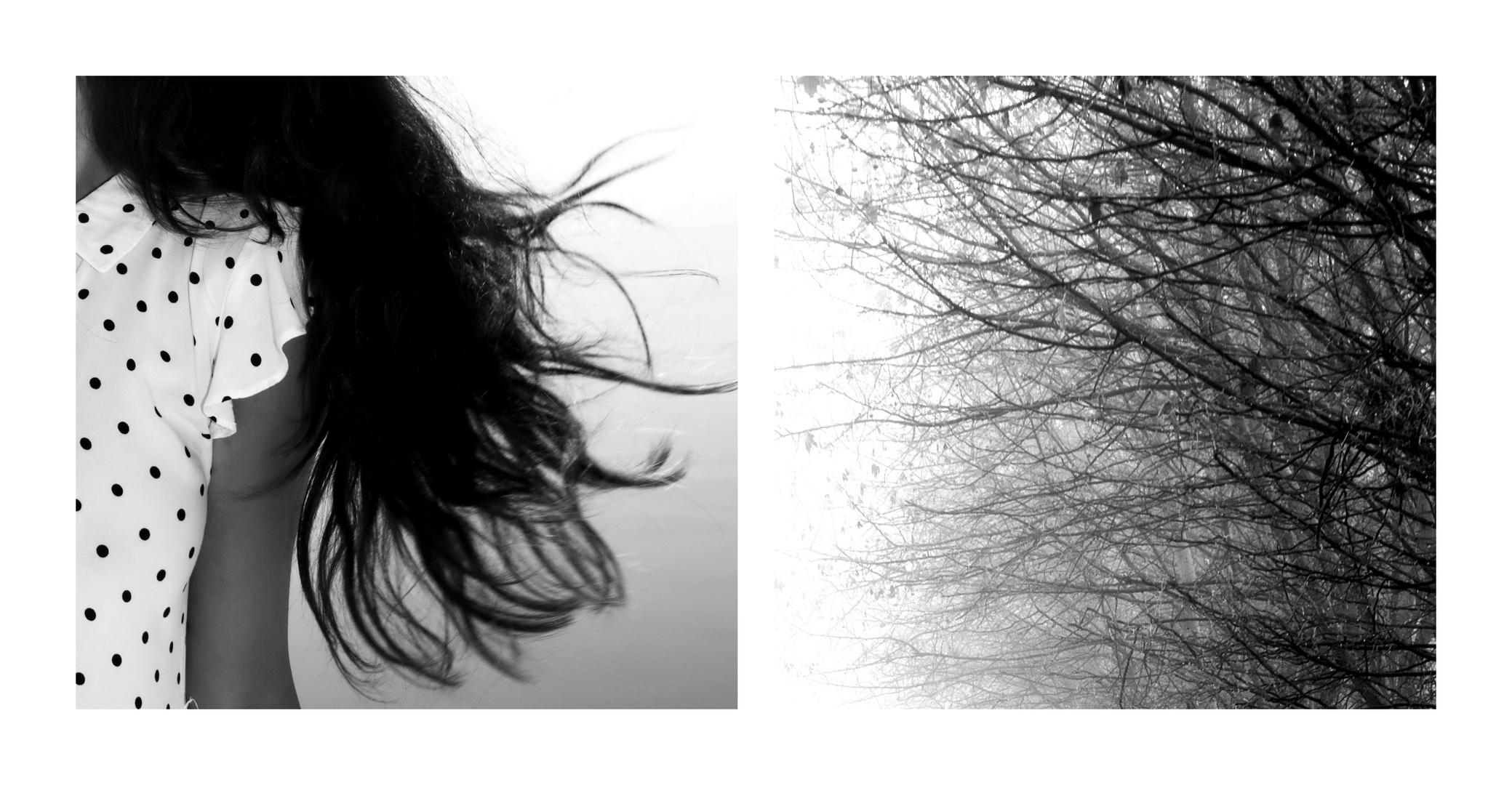 """""""il vento parla ..."""
