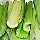 Il verde