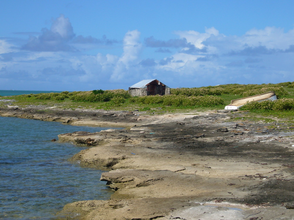 Ile Rodrigues- Carriere