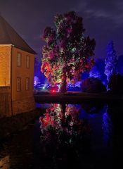 Illumina 2014 Schloss Dyck