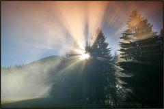 ~~ Illumination I ~~