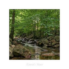 """ILsetal / Harz """" so schön und Wild ist unser Harzer Land*...."""""""