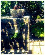Im alten Garten