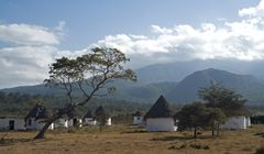 Im Arusha Nationalpark
