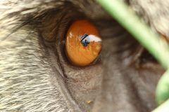 Im Auge des Betrachters.....