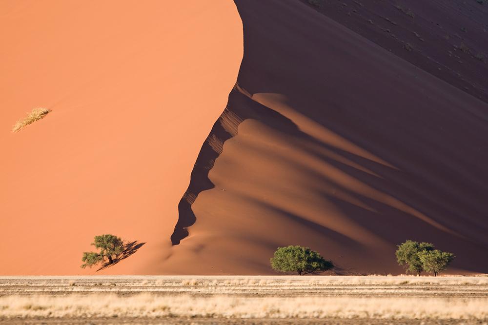 im Bann der Wüste II