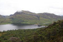 Im Beinn Eighe Natur Reserve im Nordwesten Schottlands...