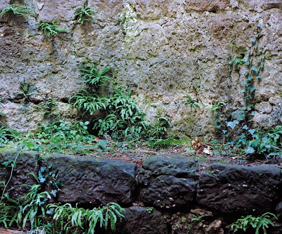 Im Bergfried ....
