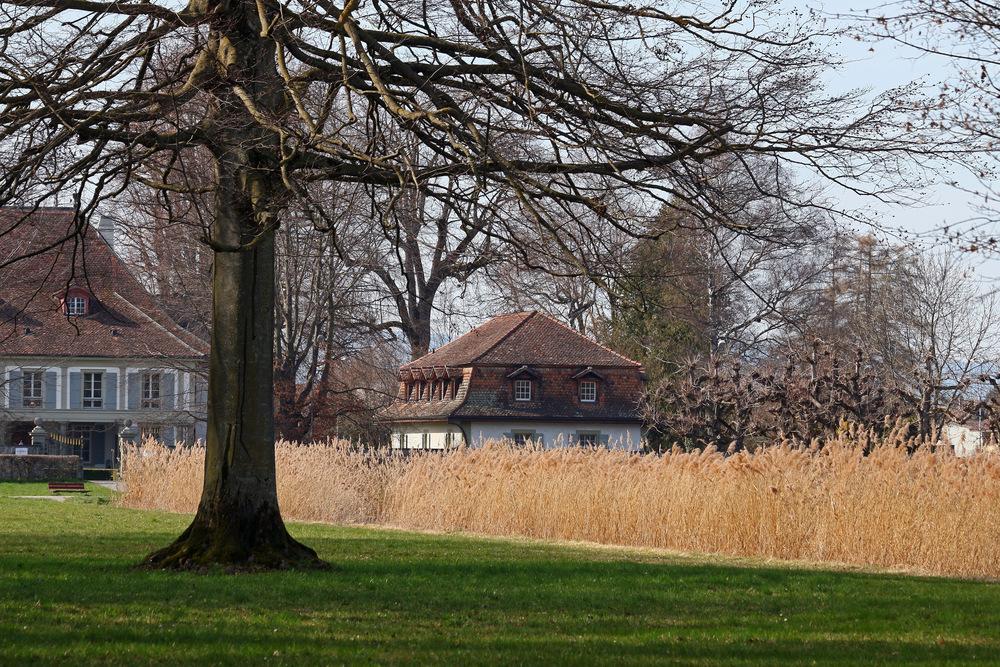 Im Bonstettenpark