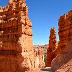 Im Bryce Canyon 2