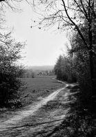 Im Calenberger Land (01)