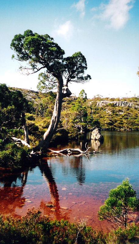 Im Cradle Mountain-Lake St Clair National Park