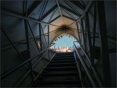 Im Dachstein-Hai