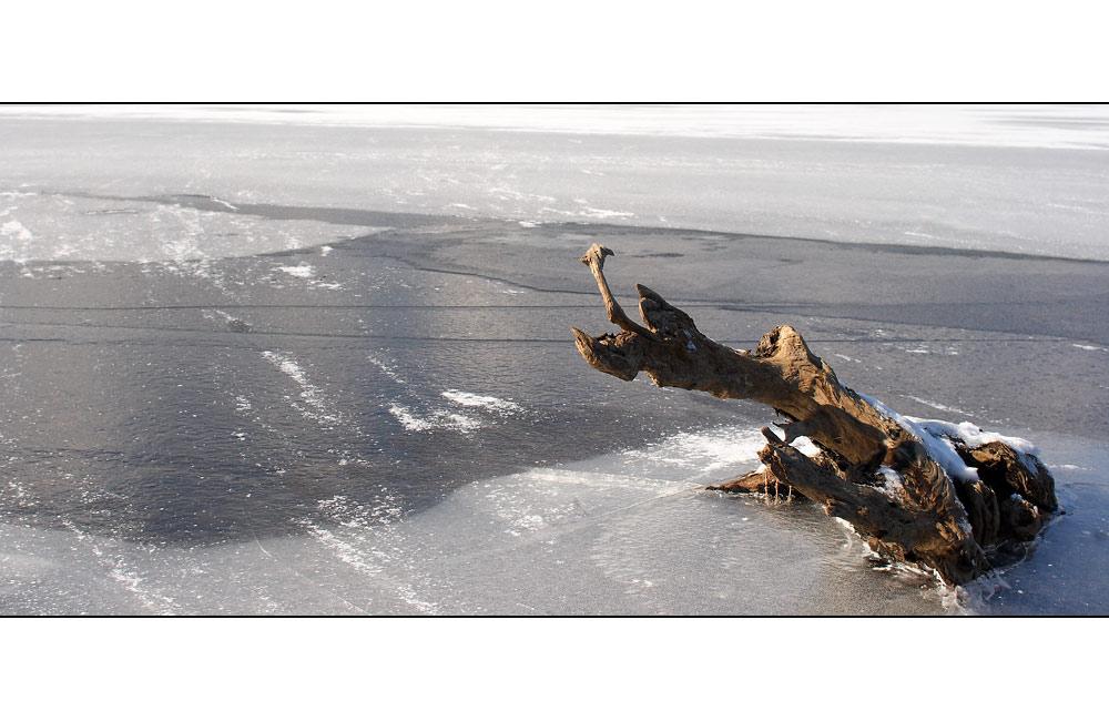 Im Eis eingeschlossen