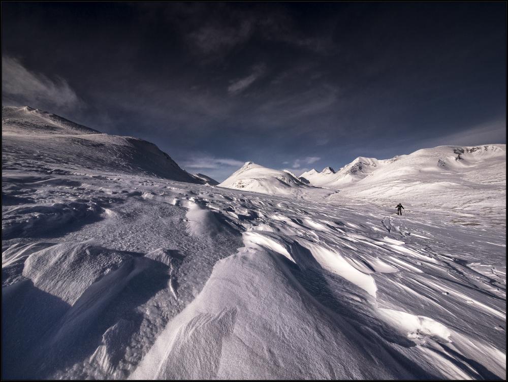 im eisekalten Polar