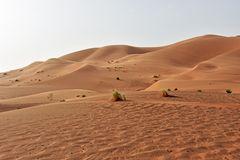 Im Erg Chebbi im Süden von Marokko