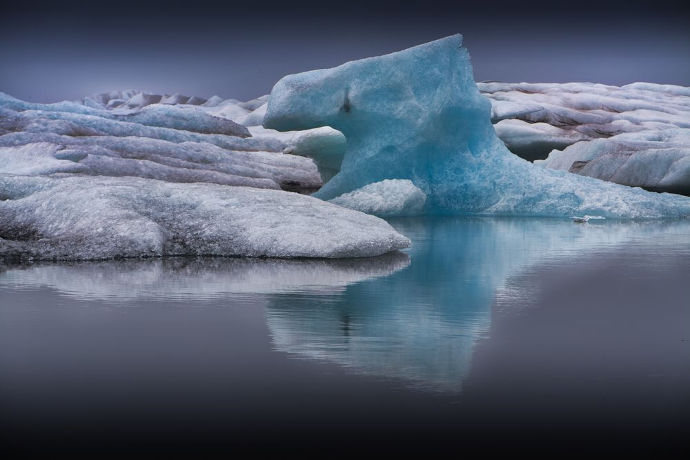 im ewigen Eis V