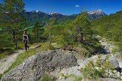 Im Felssturzgebiet von Arth-Goldau